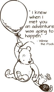 pooh adventure